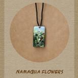 African Colours - Namaqua Flowers - N-NF-303